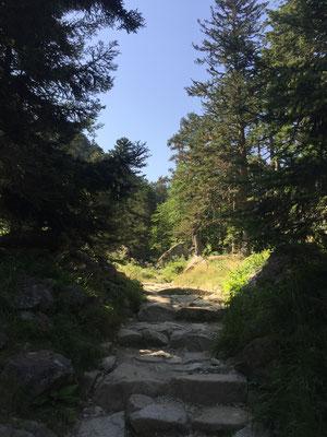 Sur le chemin de randonnée pour rejoindre le lac de Gaube