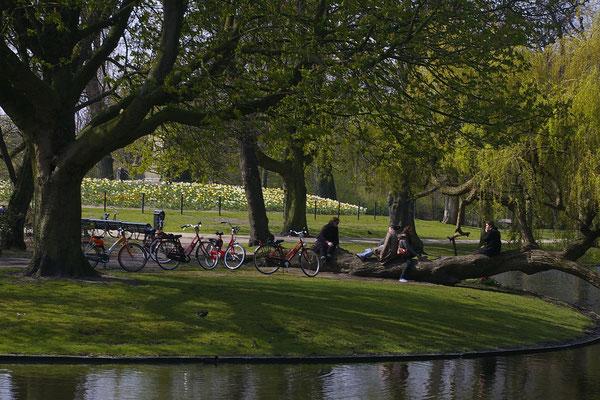 L'un des parcs les plus populaires de la ville !
