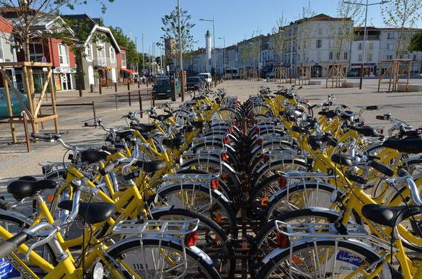 Balade en vélo Jaune - Francis Giraudon - OT La Rochelle