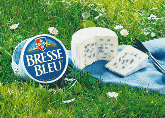 Ambiance-Bresse-bleu_credit-BRESSOR- Rreproduction Interdite - Source : OT de Bourg-en-Bresse / bourgenbressetourisme.fr