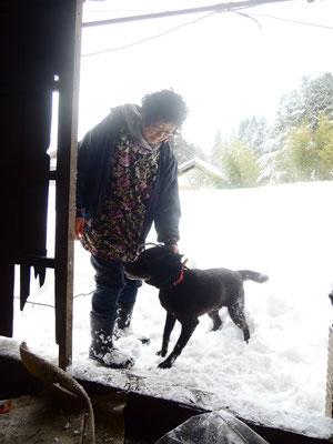 ご近所さんの了解を得て、雪かきの様子と喜ぶワンちゃん!