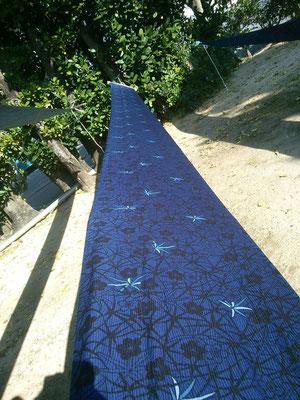 藍型/comomoの樹