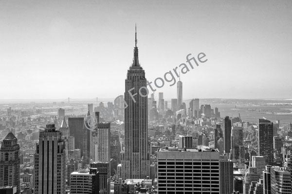 newyork018