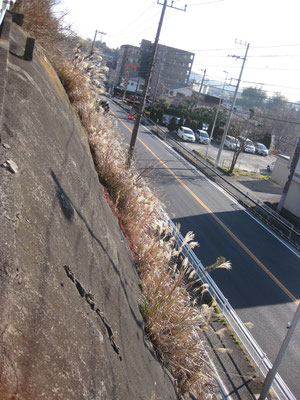 この写真の道路の部分は川だった。道橋は道路わきの崖の上にあった