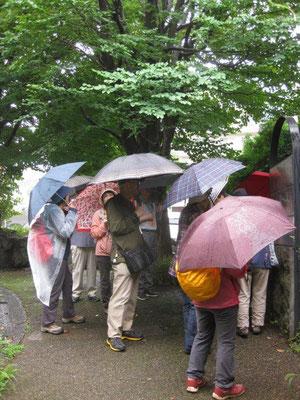 傘からの雨だれが肩に  気にせず説明を聞く参加者
