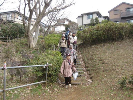 新井町公園