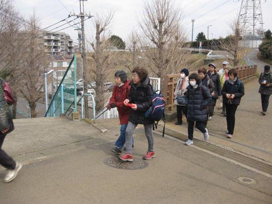 神奈川区境の尾根道