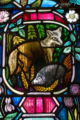Kirchenfenster in Dornoch