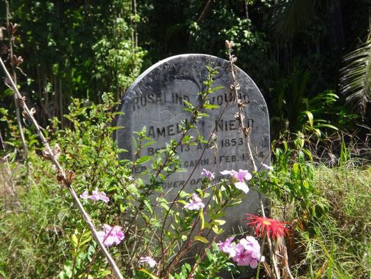 Das Grab von Adams, einem der Meuterer