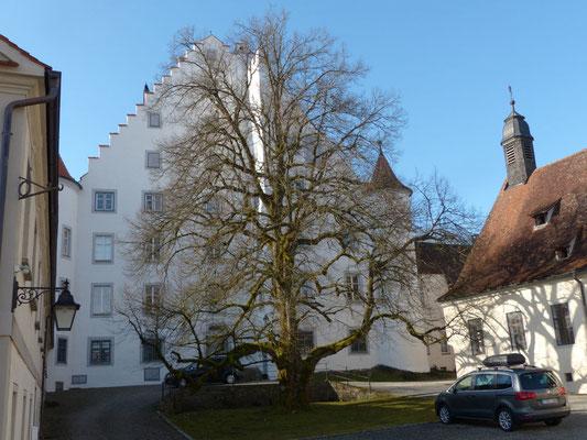 Das alte Kisslegger Schloss