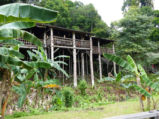 Schönes traditionelles Haus