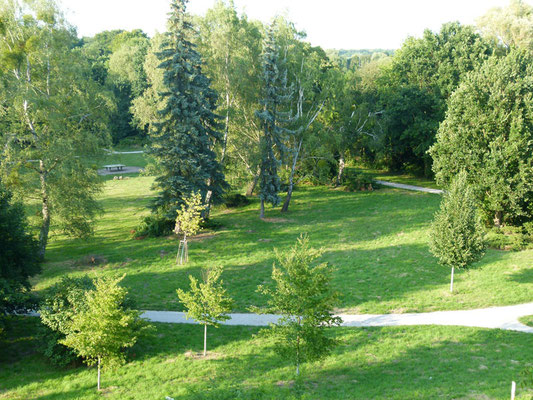 Blick von Norma's Balkon in den Schillerpark