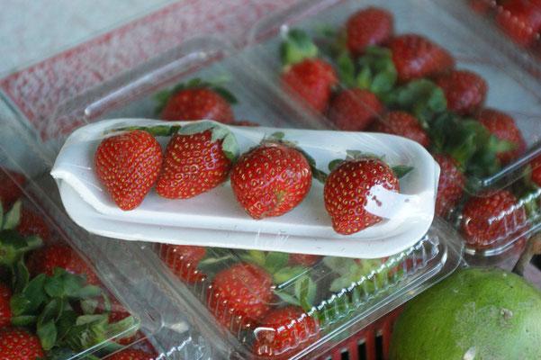 Erdbeeren sind hier nicht so gefragt