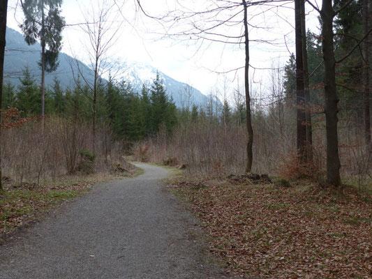 Ein schöner und ebener Wanderweg führt bis nach Oberstdorf