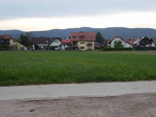 Durch die Felder führt ein schöner Rad-Fußweg hinüber nach Deidesheim