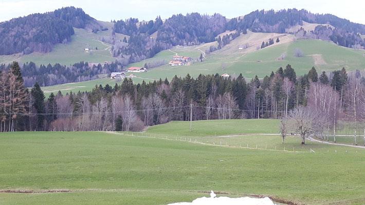 Blick über die Allgäuer Alpen ..