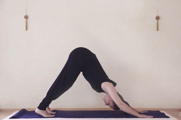 yoga-sāra