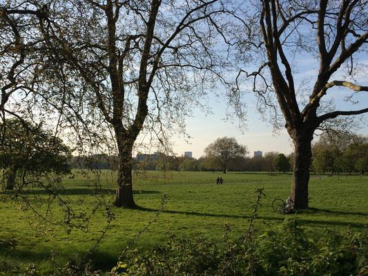 Regent's Park - Chillen auf dem Rasen