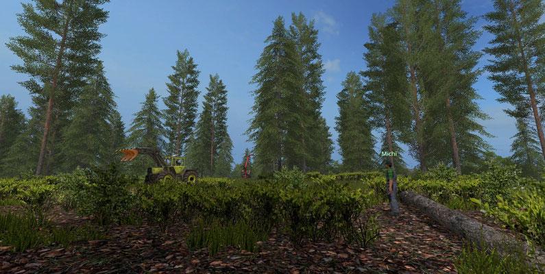 Ein Mann, ein Ziel: Der Wald muss weg.