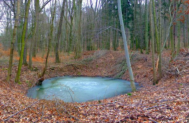Wassergefüllte Pinge im Bereich des Anna-Lagers.