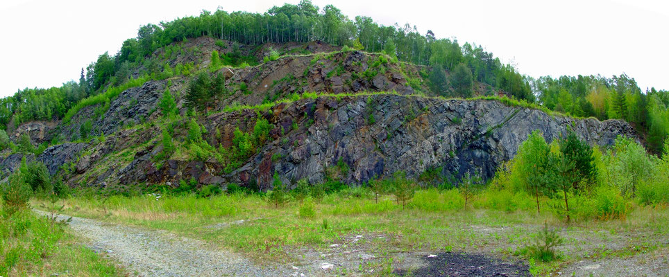 Blick von der Sohle des Kalksteintagebaus auf die östliche Bruchwand mit ihren 2 Strossen.