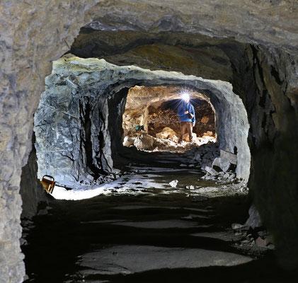"""Blick aus dem """"Gaislergang"""" in südlicher Richtung zur Querung am """"Fuchs-"""" und """"Schildkrötenbruch"""""""