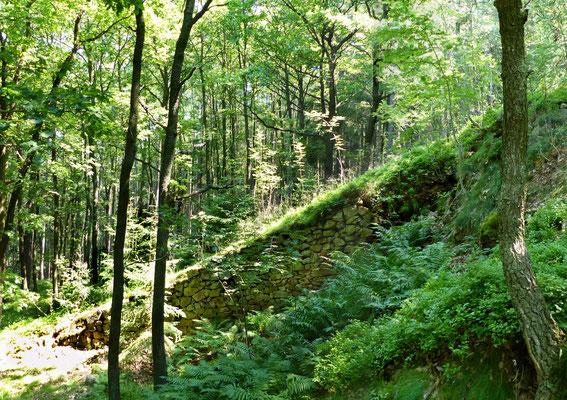 Bremsberg eines Steinbruchs im Bereich des Quarzschachts.