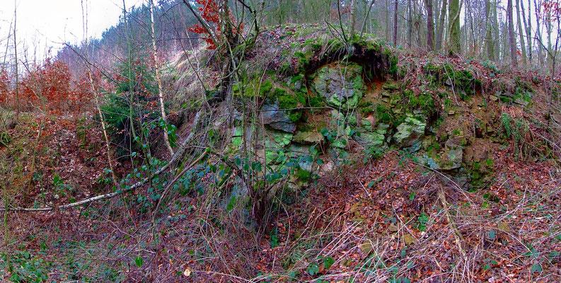 Bereich ehemaliger Förderung im Tagebau auf dem Adalbert-Lager.