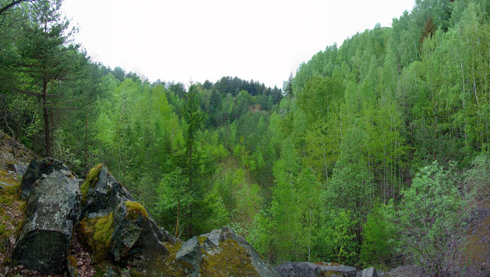 Blick in den großen Kalkbruch (3)