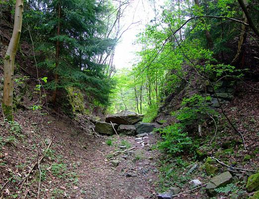 Einschnitt der Schmalspurbahntrasse zum großen Kalkbruch zwischen (2) und (3)