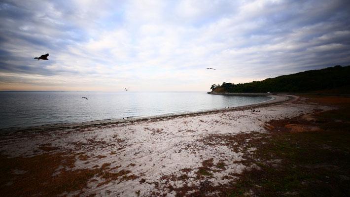 島の北側。アート作品のみならず、島全体がアーティスティックな被写体です。