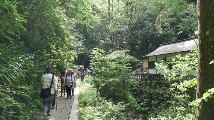 琵琶滝にある、滝行の場所。滝そのものは神聖な場所なので撮影はしません。ぜひ、皆さま自身の目でご確認ください。