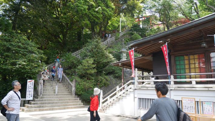 山中にあるので、社は階段でつながっています。