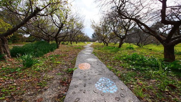 『佐久島のお庭』。色鮮やかなタイルの小道の先には...