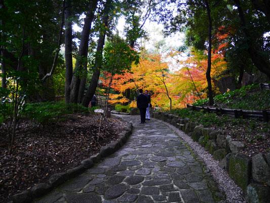 徳川園内を散策する岩崎、松本。
