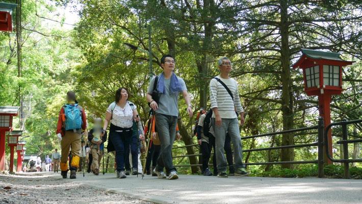 新緑の参道を歩きます。