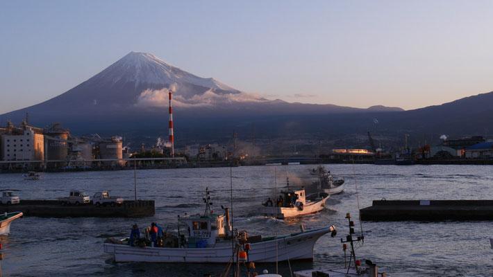 6時になると、一斉に漁船が出港してきました。