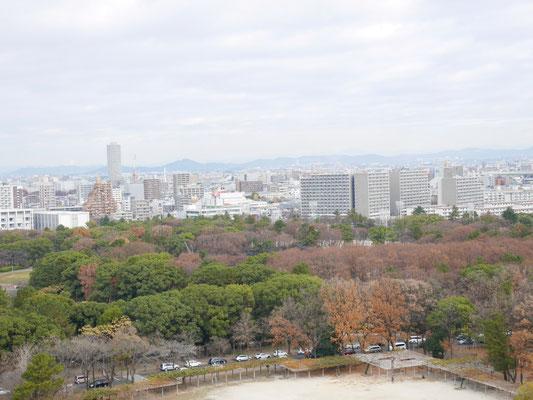 天守閣から北東方向を望む。和泉本社も見えますが、分かりますか?