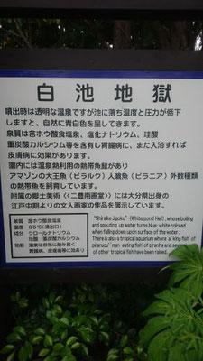 大分県白池地獄1(九州工場)