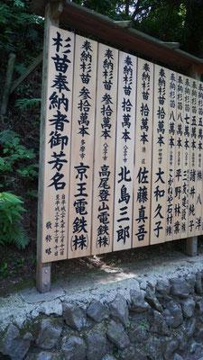 杉の苗を寄進した方の中には、八王子在住の大御所歌手の名前が。