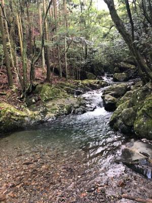 くらがり渓谷 愛知県岡崎市(春日井工場)