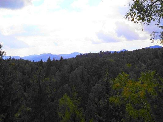 Blick vom östlichen Teil des Rosengartens zum Kreibitzer Bergland. Rechts Kaltenberg, Mitte Großer Ahrenberg/Javor, Links Himpelberg/Chribsky vrch