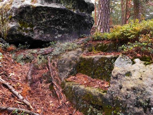 Alte Steinstufen in einem sehr unwegsamen Teil des Rosengartens, hier muß früher irgendein Zugang in Richtung Rosengartenturm gewesen sein.