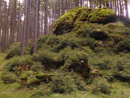Ruine im Pohligsgrund