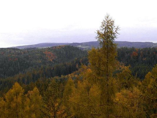Falkenwände Westspitze, Blick nach Hinterhermsdorf, Weifberg mit Turm, links dahinter Tanzplan, von Bildmitte schräg nach links unten Kirnitzschtal