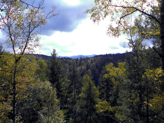 Blick vom östlichen Teil des Rosengartens zum Kreibitzer Bergland