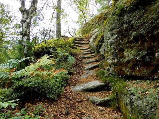 Alte Treppe vom Tannigtsteig