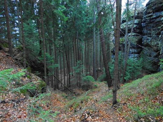 Nördlicher Beginn vom Thorwalder Gratweg