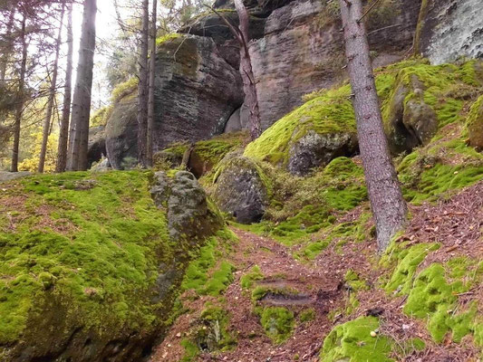 Aufstieg vom Blau markierten Wanderweg zur Drachenstiege. An dem kleinen Felsblock in Bildmitte und der Felsstufe darunter Meißelspuren.