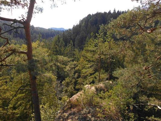 Blick in Richtung Kirnitzschtal. In Bildmitte an dem dunkler bewaldeten Hang geht im unteren Bereich der Kerbensteig Teil 1 und 2 entlang. Die markante Kurve der Kirnitzsch links davon ist nur zu erahnen.